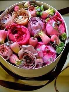 box flower - rose x clematis.Fleurs Tremolo