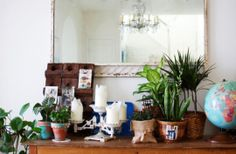 Reasons why you should put more plants in your home.