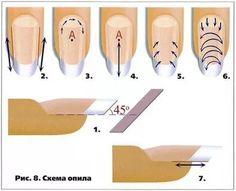 схема опила нарощенных ногтей: 16 тыс изображений найдено в Яндекс.Картинках