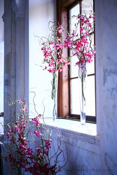 orchids and curly willow