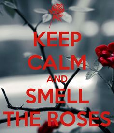 KEEP CALM AND SMELL THE ROSES