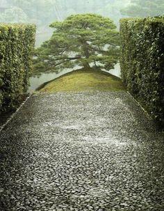 the sumiyoshi pine katsura imperial , photo by matsumura yoshiharu - Google Search