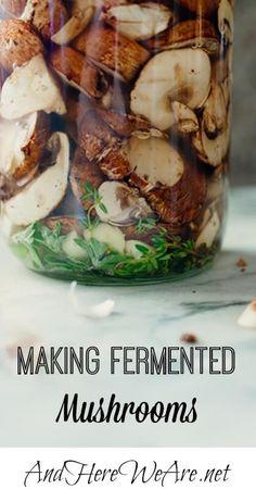 Making Fermented Mushrooms