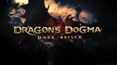 pictures of Dragons Dogma: Dark Arisen  by Penn Cook (2016-01-09)