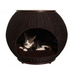 Refined Feline Cat Igloo Deluxe™ Bed & End Table - Espresso $149.95 The Igloo Deluxe gives your cat or dog a hide-a-way that makes adds a beautiful, functional piece to your decor.