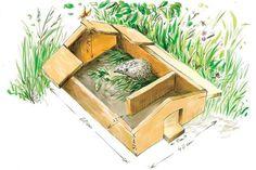 Hedgehog – our prickly friends ♥ love your garden - Modern Diy Hedgehog House, Hedgehog Box, Garden Art, Garden Design, Bug Hotel, Garden Animals, Potager Garden, Bird Boxes, Garden Projects