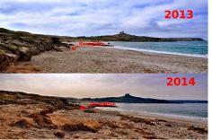 Fig. 2: il tratto di spiaggia in questione nel 2013 e nel 2014. La freccia rossa indica la posizione dei geroglifici di recente messa in luce.  Foto di Stefano Sanna presa dal blog di Graziella Pinna Arconte