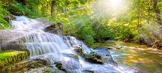 Morning beautiful forest stream waterfall poster background
