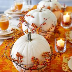 white pumpkin center pieces | white pumpkin centerpiece