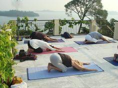 Yoga Retreat  at Himachal Pradesh