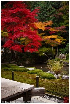 Nanzen-in () subtemple of Nanzen-ji (): The garden is simple and minimalist, and is also quiet for most tourists go see Nanzen-ji and the more popular sub-temples. Adding to this feeling is the fact that the temple is closely surrounded by the fores