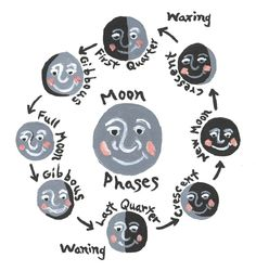 One of my favorite moon phase illustration.