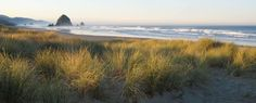 Things to Do and See in Cannon Beach Oregon - Cannon Beach