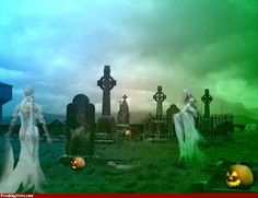 Mist in Cemetery