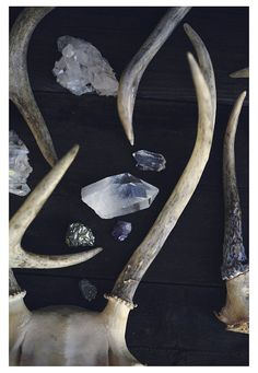 Antlers  Crystal  Quartz  Gem  Deer  Fine Art by AliciaBock, $35.00