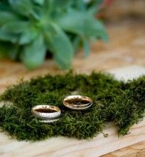 Silver Rings, Herbs, Shop, Plants, Elegant, Herb, Plant, Store, Planets