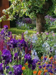 Planting | Combinations