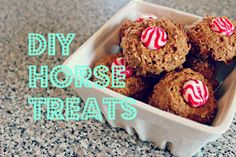 Looking for a new way to spoil your horse? Here are a few easy DIY horse treat recipes that your horse will love and are perfect for Fall. Homemade Horse Treats, Horse Cookies, Horse Crafts, Cowboy Crafts, Christmas Horses, All The Pretty Horses, Pet Treats, Banana Recipes, Show Horses