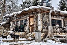 Moose Art, Camping, Park, Fun, Animals, Travelling, Blog, Campsite, Animales