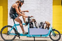 Cargo bikes aren't just for kids...dogs + cargo bike