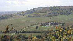 Denbie's Vineyard, Surrey