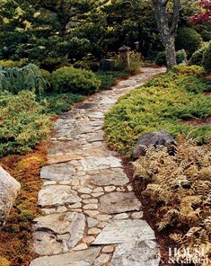 In a Massachusetts garden small fieldstone flats and washed cobbles are used for the path that winds past the Japanese painted fern Athyrium niponicum pictum right foreground.