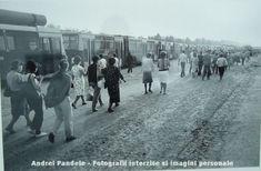 Andrei Pandele – fotografii interzise din perioada comunista | dawn's song Bbc, Panda, Street View, Lifestyle, Pandas