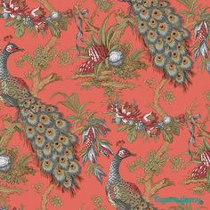 tapeta ptaki pawie  //  wallpaper birds // Tapeta York 18 Karat EK4221 (365 PLN)