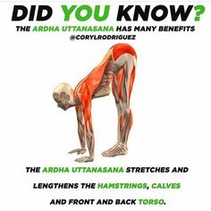 yoga fitness,yoga for beginners,yoga poses,yoga stretches Yoga Positionen, Sup Yoga, Yoga Moves, Stretching Exercises, Yoga Meditation, Stretching Benefits, Fitness Facts, Yoga Fitness, Body Women