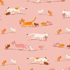 Tissu coton américain Tiger Lily - Maman chat fond rose.