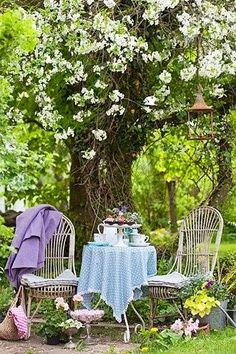 come sit in the garden...what a cute little mad hatter tea party set up in my enchanted garden:)