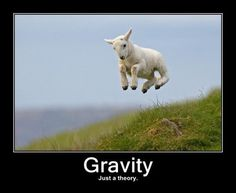 like evolution, gravity is just a theory