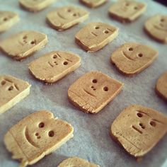 speculaas cookie faces