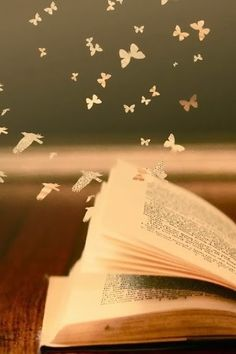 Books are magical. They aren't made of pages and words. They're made of hopes, dreams and possibilities.
