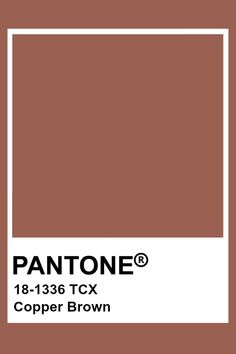 Pantone Swatches, Color Swatches, Pantone Colour Palettes, Pantone Color, Colour Pallette, Colour Schemes, Brown Pantone, Colour Board, Color Theory