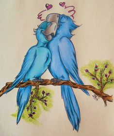 Rio-I have found the girl by ChaoticColorStudio on DeviantArt Love Birds Drawing, Bird Drawings, Art Drawings Sketches, Disney Drawings, Cartoon Drawings, Painted Bricks Crafts, Rio Movie, Disney Paintings, Cute Doodles