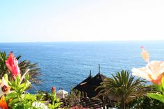 Sea water, fresh air, beautiful flowers... A perfect mixture for having a good trip. #hotel #jardintropical #holidays #tenerife #adeje #relax #summer