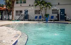 Home - Siesta Key Hotels Beach Resort and Suites Siesta Key Hotels, Siesta Key Beach, Siesta Key Village, Beach Cart, Two Bedroom Suites, Photo Room, Tiki Hut, Bbq Area, Beach Resorts