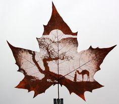 Nas folhas