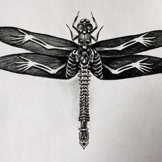 Another variation on the skull dragonfly theme. By John McKee at Twisted Image Tattoo
