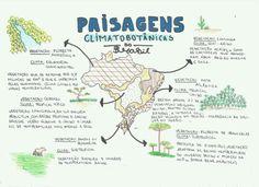 GEO - Paisagens Study Help, Study Tips, Mental Map, Environmental Engineering, Study Board, Notebook Organization, School Notes, Studyblr, Study Inspiration