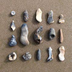 Flint I collected from Hunstanton beach (UK) in November 2011