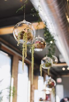 Brides.com: . For a more contained take on the greenery chandelier, Blush & Bloom Flower Studio hung mini terrariums with trailing greenery to decorate the space.