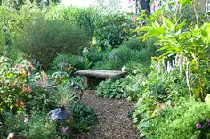 campo de fiori - near great barrington