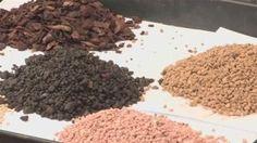 bonsai soil mixture