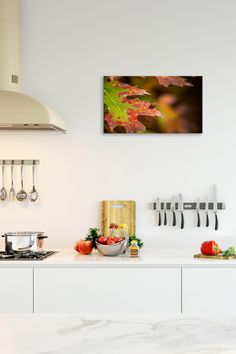 Autumn Ladybug - Bright fall colors surround a lovely ladybug in this colorful autumn art print. Metal wall prints are easy to keep clean and make great kitchen décor. Shop now at https://rogueauroraphotography.com/wall-art-shop/autumn-ladybug.