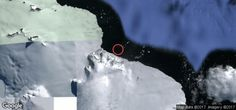 Click to zoom out and see where this material was recorded Penguins, Penguin