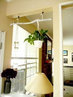 Install two hooks into the ceiling anywhere you want and then hang a branch from them. The branch can be the support for anything else you might want to hang there.