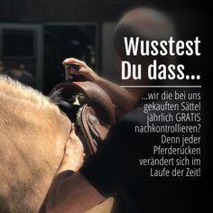 Wusstest Du dass wir die bei uns gekauften Sättel jährlich GRATIS kontrollieren? Dies kann Dir helfen, Muskulaturveränderungen schnell zu erkennen und schützt in vielen Fällen davor, einen neuen Sattel kaufen zu müssen oder schlimmere Erkrankungen im Bewegungsapparat des Pferdes in Kauf zu nehmen! www.americanhorsepoint.com Quarter Horses, American, Mustang, Movies, Poster, Western Saddles, Horse And Rider, Training, Equestrian