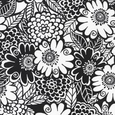 cx3639 Floral Black and White Zesty Zinnia black and white flowers blooms blossoms